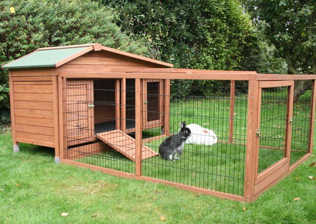 Outdoor Rabbit Hutch Best Choices For 2021