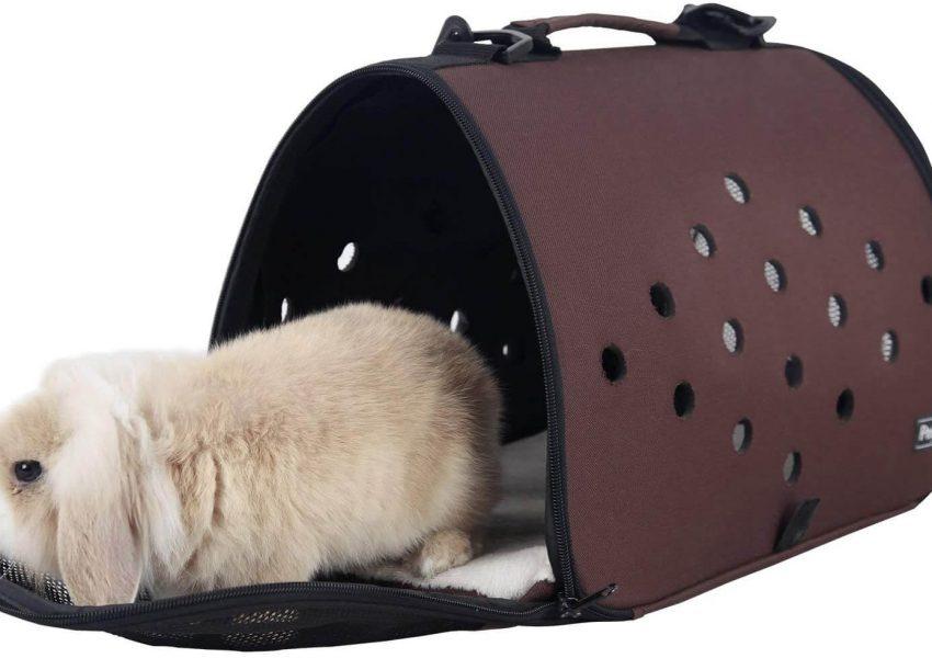 rabbit carrier